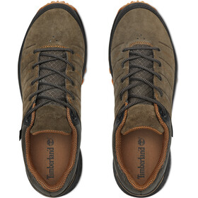 Timberland Parker Ridge Low GTX Chaussures Homme, grape leaf
